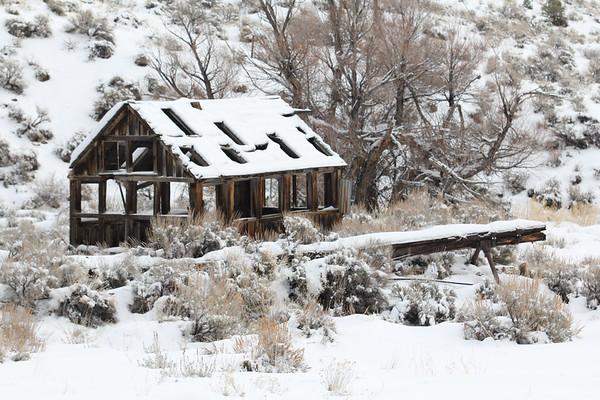 Carson City | Nevada