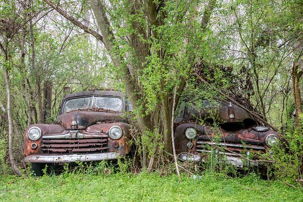 Old Car City | White | Georgia