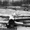 Split rail fence & snowy fields at Lincoln Log Cabin State Park near Charleston, IL