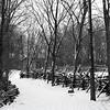 Split rail fence & snow covered lane at Lincoln's New Salem