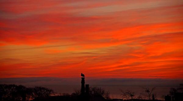 Ruby Sunrise, Aberdeen