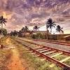 #srilanka #srilankan #mysrilanka #visitsrilanka