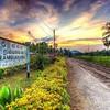 #srilankan #srilanka #rambukkana #train ride #train #ceylon #mysrilanka #visitsrilanka #stylesrilanka
