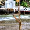 My Trip Down South #Srilanka #srilankans #mysrilanka #visitsrilanka #Merissa #Welligama #Matara #paradise #ceylon #68thindependenceday