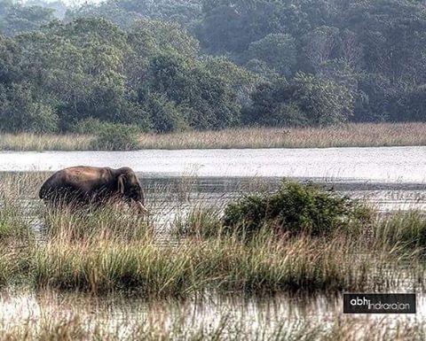 #srilankan #Srilanka #mysrilanka #visitsrilanka