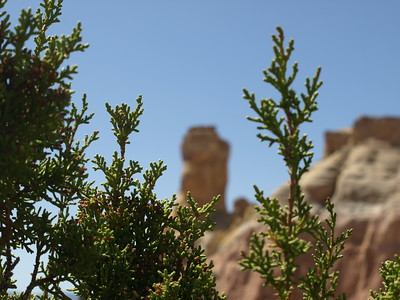 Abiquiq (Ghost Ranch), New Mexico