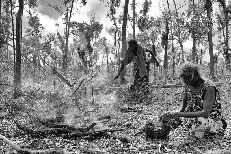 Dhopia Gurruwiwi (devant) et sa fille Zelda (au fond) préparant la cuisson de l'échidné qu'elles viennent de chasser à Mata Mata. Terre d'Arnhem/Territoire du Nord/Australie
