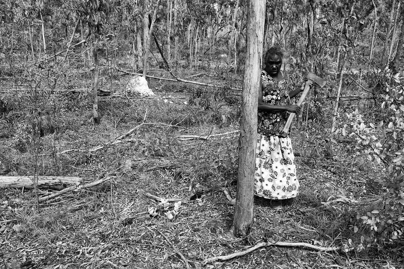 Dhopia Gurruwiwi s'apprêtant à couper un arbre, sur les terres familiales de Mata Mata, pour en faire un yidaki (didgeridoo). Terre d'Arnhem/Territoire du Nord/Australie