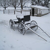 Buggy After SnowFall