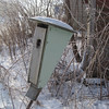 Bluebird House in the Winter
