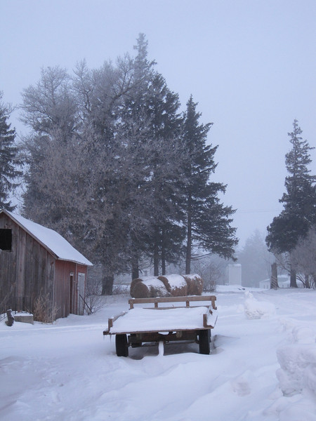 Winter scene in Amish country