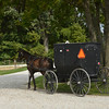 Amish Horse & Buggy Leaving