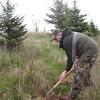 Rick Hansen Tree Planting 3