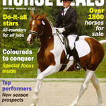 Horse Deals - an International Magazine printed in Europe. Cover Issue. My first cover printed outside the United States.