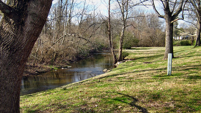 My view as I walk my daily 1.5 mile walk at home in Franklin, TN.