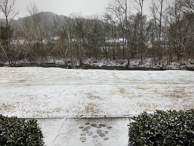 Friday, January 29, and Noon.  Snow began about 9AM.  This is just the beginning.