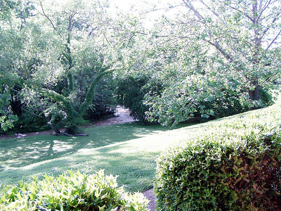 Spring 2004 My Home