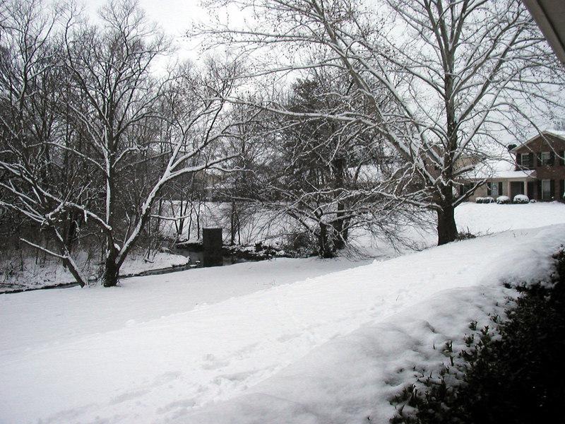 Snow at Home 2003