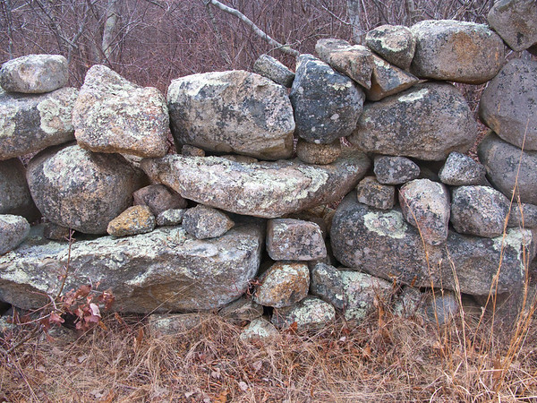 Vineyard Stone Wall