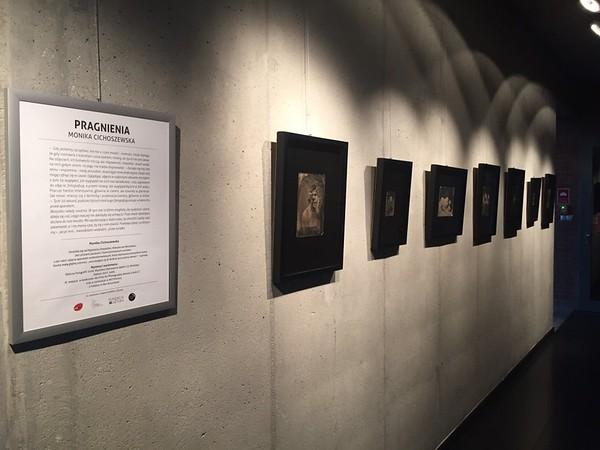 Individual Exhibition, Galeria Srefa Art,  Żory,  Kurator Marek Karaś