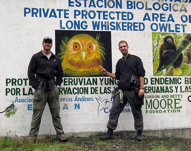 The morning after having found the near-mythical Long-whiskered Owlet together with David Shackleford (left), Oct 2010, Abra Patricia, Peru. Birders have been seeing it regularly after discovering its territory near the lodge.