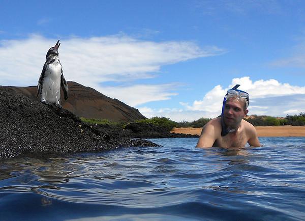 Birding Galapagos. Sometimes birding can be easy. Isla Bartolomé, Feb 2013.