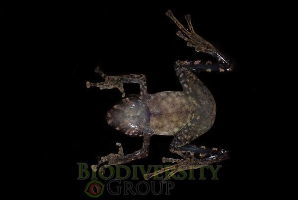 Biodiversity Group, _DSC0645 (2)