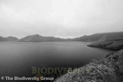 Biodiversity Group, DSC04102