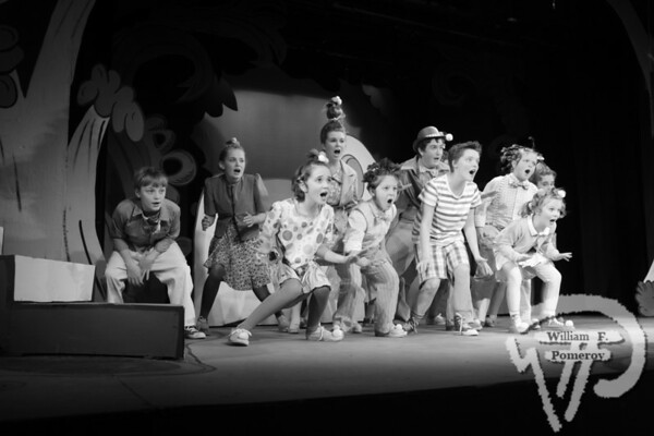 """THEATER Review A scene from """"Seussical the Musical.""""   Horton hears an encore If you go . . . WHAT: """"Seussical the Musical"""" WHERE: Harwich Jr. Theatre, 105 Division St., West Harwich WHEN: Friday and Saturday, 7:30 p.m., Sunday 4 p.m., through Jan. 6 TICKETS: $25 general admission and $15 youth under 21 BOX OFFICE: 508-432-2002  The Cape Codder  DECEMBER 14, 2012page 35"""