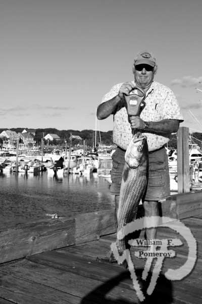 Prize catchBob Farrell of Dennisportholds his 20.9-pound striped bass,which was caught off Monomoy in the Gulls & Bouys ClubAngler's Fishing Tournament at Sesuit Harbor.For more information, visitCAPE COD GULLS & BOUYS CLUBor call Kara Burke at 508-364-2971 The Register SEPTEMBER 23, 2010page 2