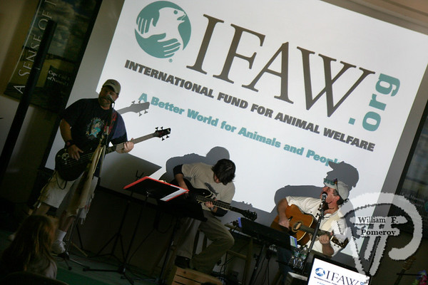 Bob Peck and Friendsperform a song benefiting Animal Action Week for IFAW at Cape Cod Museum of Natural History Bob Peck 2008Bob Peck Music Entertainment