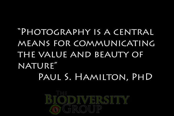 Biodiversity Group, Paul Quote