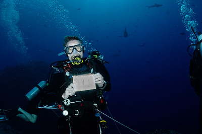 999 dives in Palau