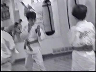 Phoenix Karate video