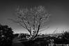 Burn Monument II, Mesa Verde National Park, CO, 2013_smugmug