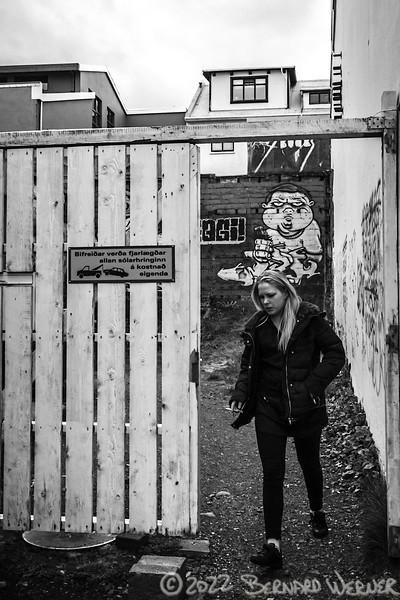 Black & White World, Reykjavik, Iceland,2014