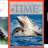 The Year in Pictures by Time Magazine 2013