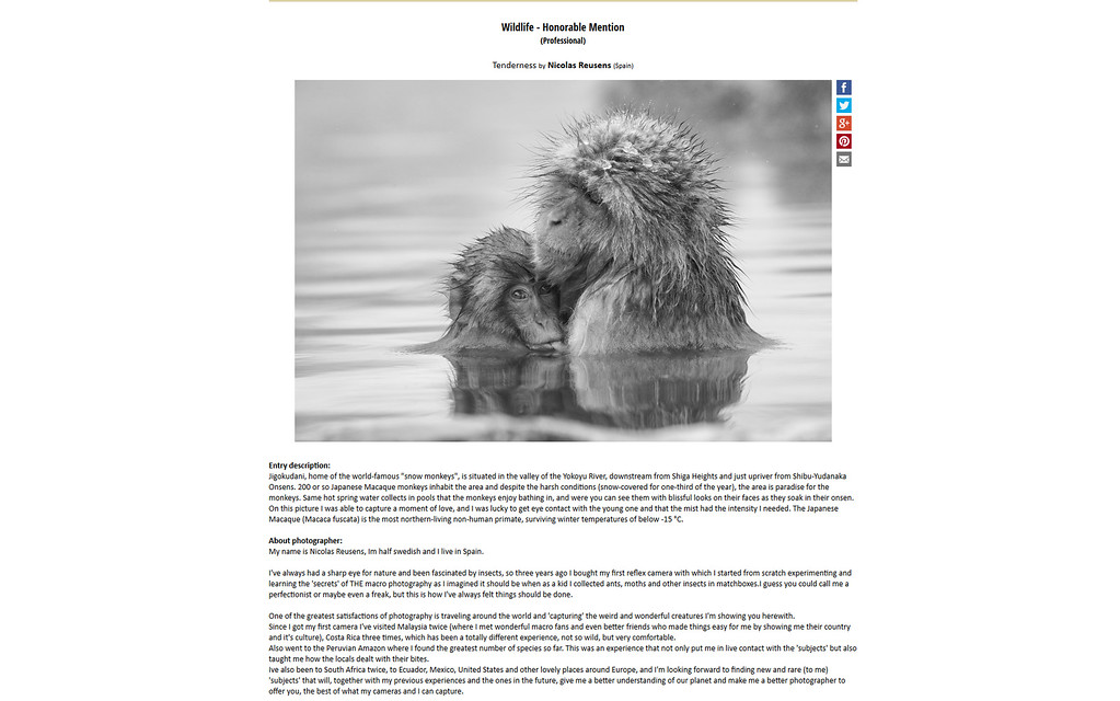 Monochrome Awards 2016 Wildlife - Honorable Mention (Professional)