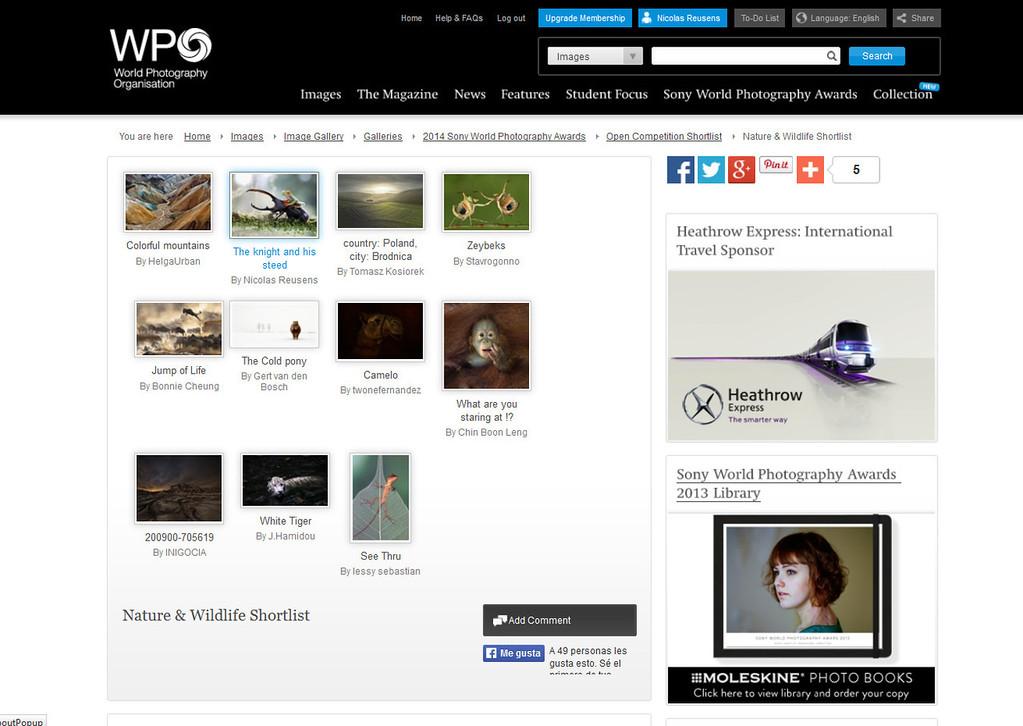 Sony World Photo 2013 Shortlist