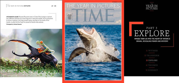 The year in pictures from Time Magazine