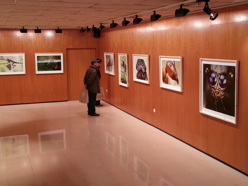 My pictures at Fineart Igualada PHoto Exhibition