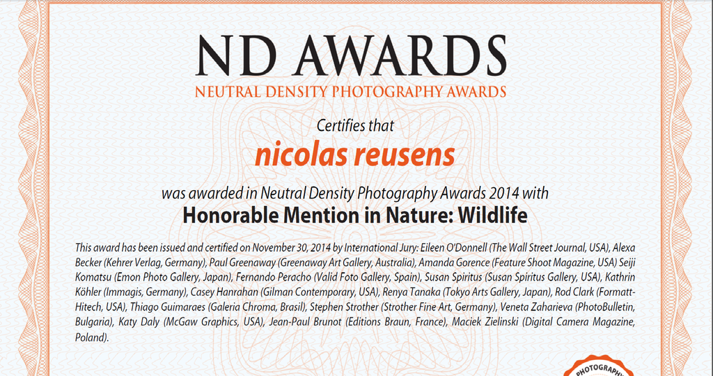 Honorable Mention ND Awards 2014