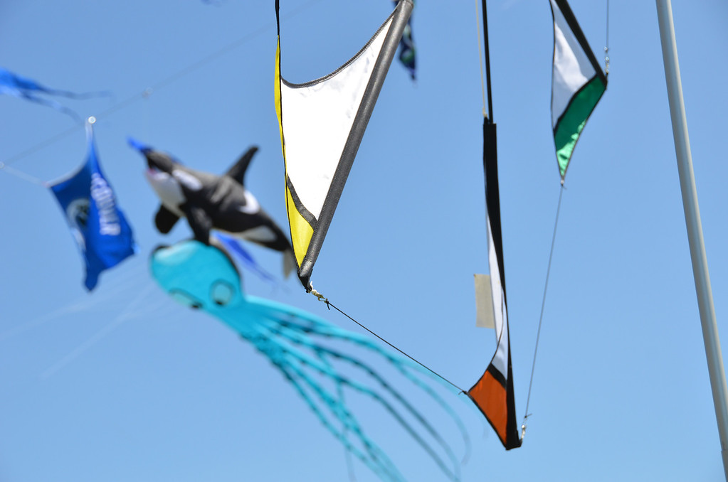 kites of many colors