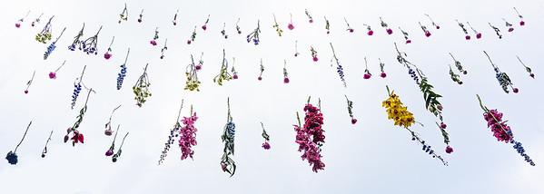 Celebrate Spring-2