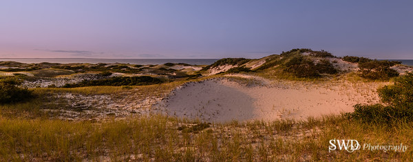 Late Afternoon at the Sandy Neck Beach Dunes, Cape Cod