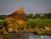 Moon Rise at Point of Rocks, Cape Cod