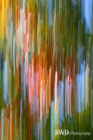 Colors of Fall - An Abstract