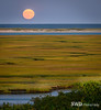 Harvest Moon Over Nauset Marsh