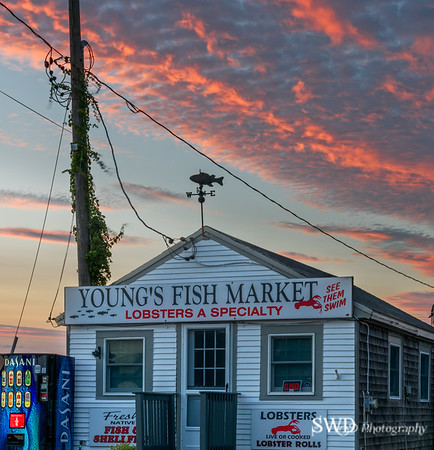Young's Fishmarket at Sunset