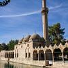 The Rizvaniye Mosque along the Balıklıgöl pool.